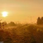 Herfst en ochtendmist